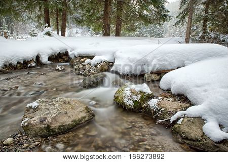 Flowing springs in snowy forest with long exposure with ND filter