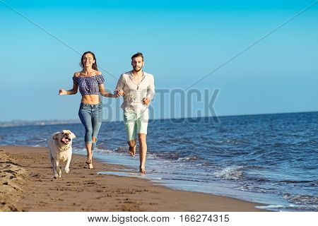 Portrait of a happy couple with dogs at the beach.