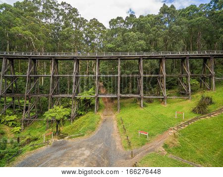 Noojee Old Trestle Bridge In Eucalyptus Forest.