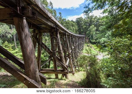 Vintage Trestle Bridge In Australian Eucalyptus Forest.