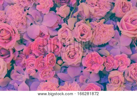 Pink flower background of rose carnation and orchid. Soft filtered effect image