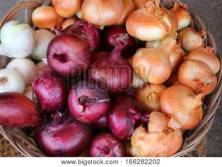 Red And Yellow Onions For Sale At The Market