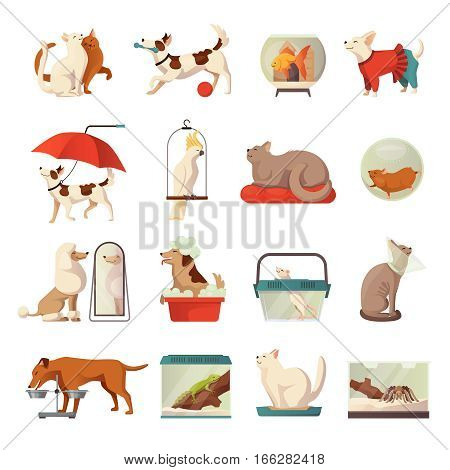 Pet shop icons set with cats and dogs flat isolated vector illustration