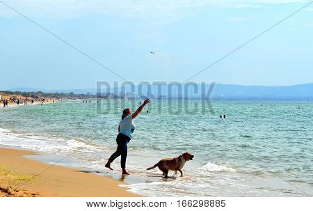 ANAPA, RUSSIA - OCTOBER 03, 2015: Barefoot woman in blue sports pants and T-shirt thrown in sea stick big dog. Dog running in water to bring it to hostess. Blur in motion