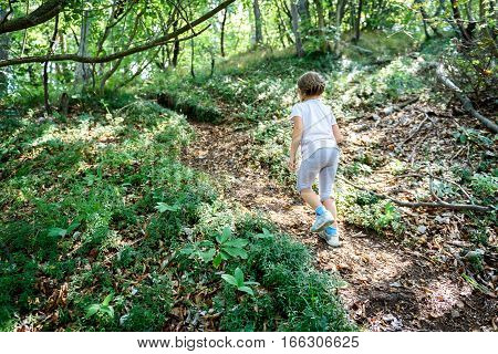 Little Girl Is Hiking In The Mountains Or Woods.