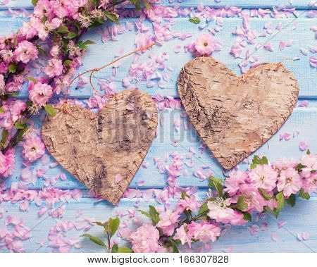 Valentine Day or love background. Two decorative hearts and pink sakura flowers on blue wooden background. Selective focus. Toned image.