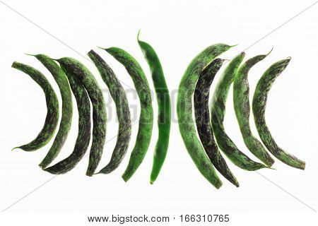 Backlit row of french green beans on white, pattern for textured background. Abstract art composition of fresh organic vegetables