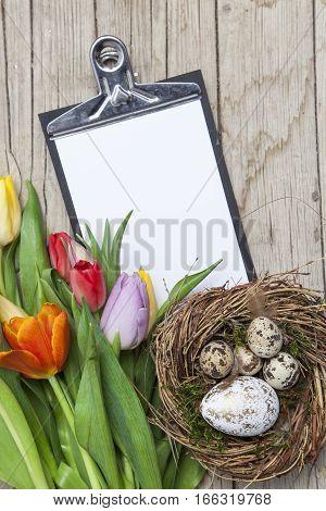 Frische Bunte Tulpen Vor Einem Holzhintergrund Mit Osterhasen