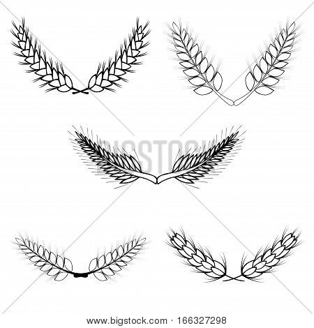 Set of laurel wreath. Collection of floral and wheat branches made in vector