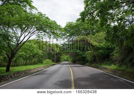 asphalt road through forest in Nicaragua Central America