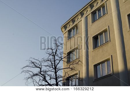 Symbiotic view of prefab house and tree branch with sky in background