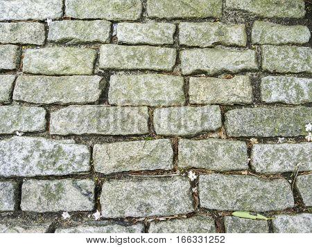 Rough granite sett paving on garden path