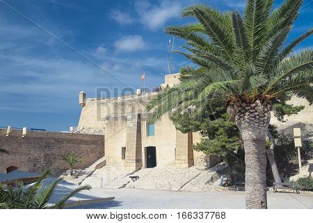 view of the courtyard of santa barbara castle with a palm tree on foreground