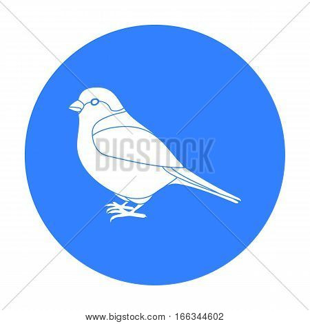 Bullfinch icon in blue style isolated on white background. Bird symbol vector illustration.
