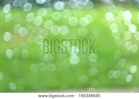 natural and fresh green background with decorative bokeh