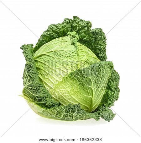 Savoy cabbage isolated on white background. close up