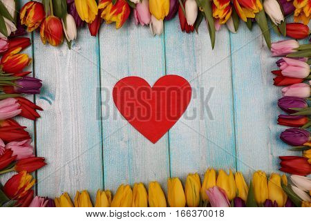 Red heart lies on the background of wood inside the frame of tulips flowers