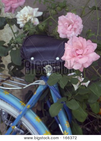 bicycle with flowers ** Note: Shallow depth of field poster