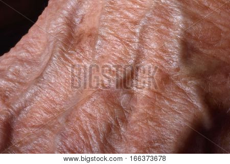 Spots and vein on the hand of a senior woman