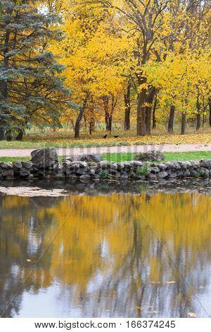 Scenic Autumnal Park With Yellow Trees Near Lake, Reflection In Water Surface, Golden Leaves On The