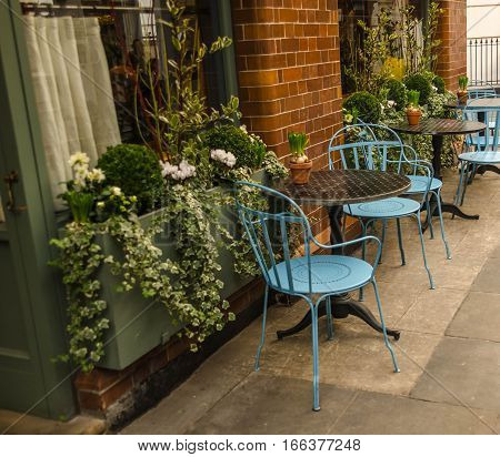 restaurant, cafe, bistro, bar, table, chairs, flowers