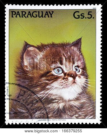 PARAGUAY - CIRCA 1989 : Cancelled postage stamp printed by Paraguay, that shows Cat.