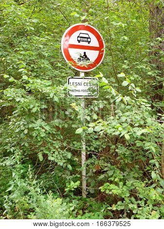 Photo of a traffic sign surrounded by greenery