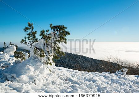 View over clouds in Jested mountain Czech republic