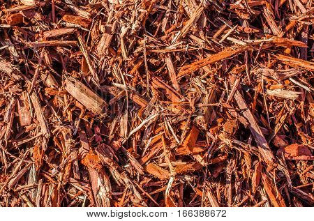 Wood chips, mulch, beauty bark.  Natures textured mulch for outdoor garden landscaping.  Natural abstract background or backdrop