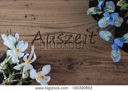 Wooden Background With German Text Auszeit Means Downtime. Spring Flowers Like Grape Hyacinth And Crocus. Aged Or Vintage Style