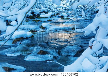 Winter Landscape With A Mountain Stream