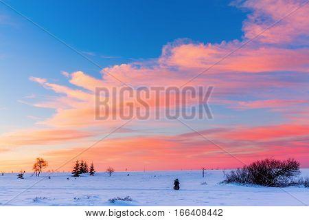 Winter Landscape In The High Vens, Belgium