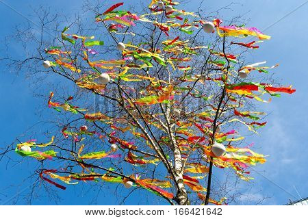 Traditional Czech easter decoration - decorated birch tree (Betula pendula) with colorful ribbons and painted eggs - rural symbol of easter holiday