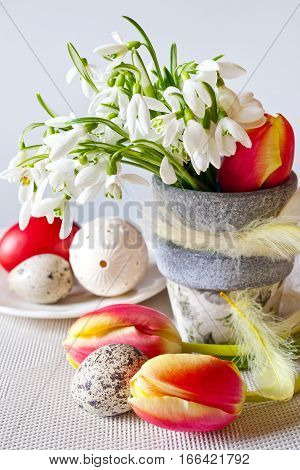 Traditional Czech easter decoration - flowerpot with white snowdrops and tulips flowers and decorated white perforated eggs on the white background. Spring easter holiday arrangement.