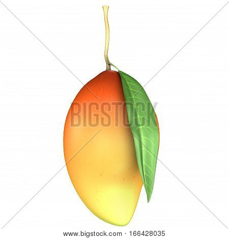 The mango is a juicy stone fruit belonging to the genus Mangifera, consisting of numerous tropical fruiting trees, cultivated mostly for edible fruit