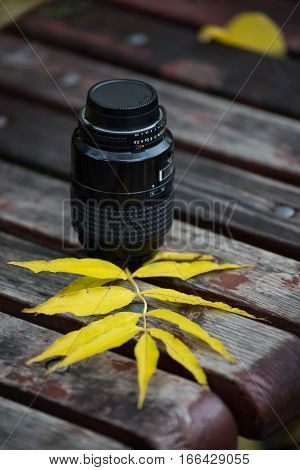 The lens of the camera and autumn leaves on the bench