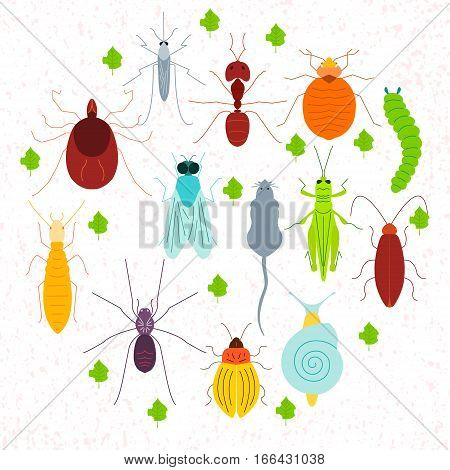 Set of pest insects and damaged leaves in a circle on white background. Parasitic beetle concept. Perfect for exterminator service companies. Vector illustration.