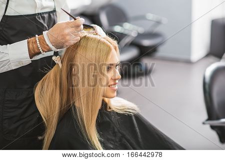 Professional stylist is dying straight blond hair. He is wearing gloves