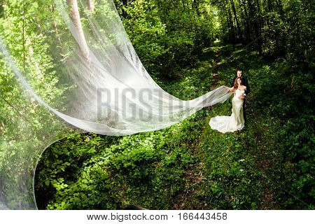 Groom and bride with very long bridal veil in the spring forest