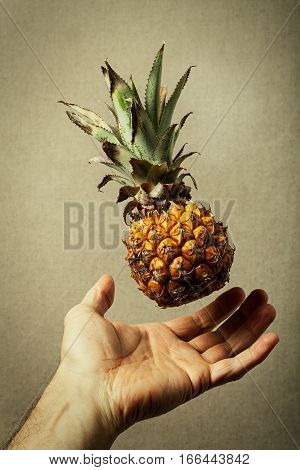 Nano pineapple. Nature and man. Food lightness. A nano pineapple flying over an open hand. Lightness of healthy food. Nature and man concept. Vintage background.