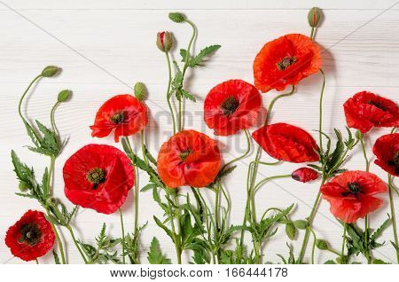Beautiful red poppies on white wooden table