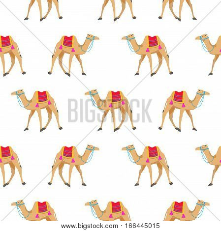 Camel cartoon vector seamless pattern on white. Two-humped desert animal with decorated bridle and saddle.