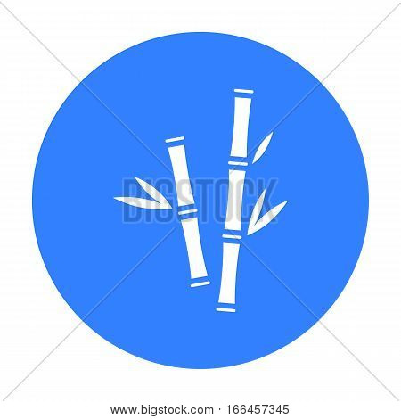 Bamboo icon of vector illustration for web and mobile design - stock vector