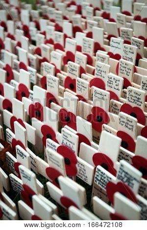 LONDON UK - 13 NOVEMBER 2010: Full frame detail of messages of remembrance in tribute to those lost their lives in the line of duty.