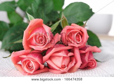 Pink Roses, Flowers on White Background, card for Valentines day, copy space, Pastel Color, horizontal