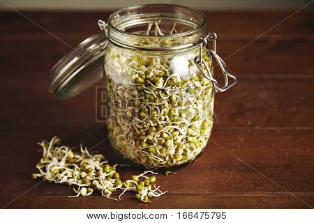 Many small soy bean sprouts inside big opened transparent glass jar isolated on wooden table, some sprouts are near