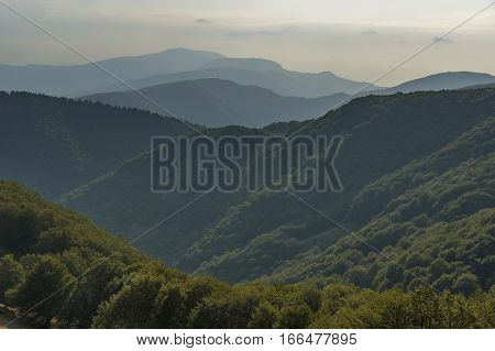 Mountain forest at Central Balkan mountain, Beklemeto or Trojan pass, Stara Planiana, Bulgaria