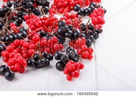 Schisandra chinensis or five-flavor berry. Aronia or chokeberry. Fresh red and black ripe berry on white. Copy space.