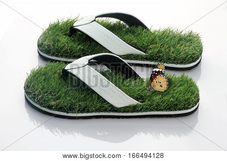 Slipper with Green Grass and butterfly on White Background
