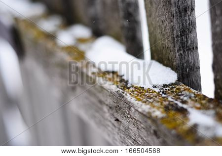 Old wooden fence covered with lichens and moss on blurred background